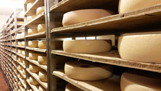 Caves de fromages