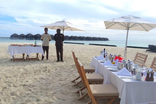 Un luxueux petit déjeuner sur la plage, un service haut de gamme