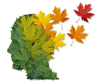 21 Septembre 2015 : Journée mondiale de lutte contre la maladie d'Alzheimer