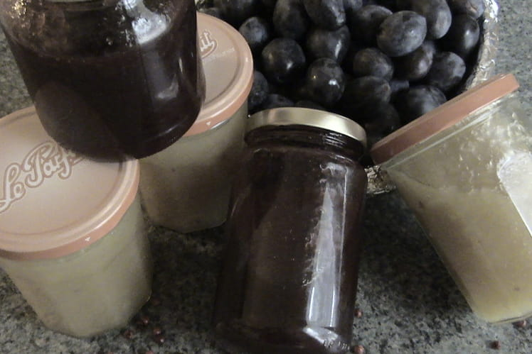 Marmelade de prunes et de brugnons blancs