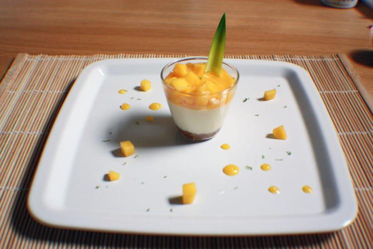 Cheesecake exotique