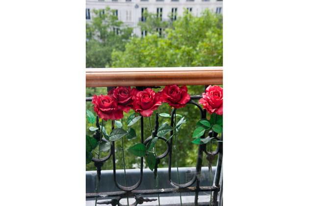 Roses au balcon