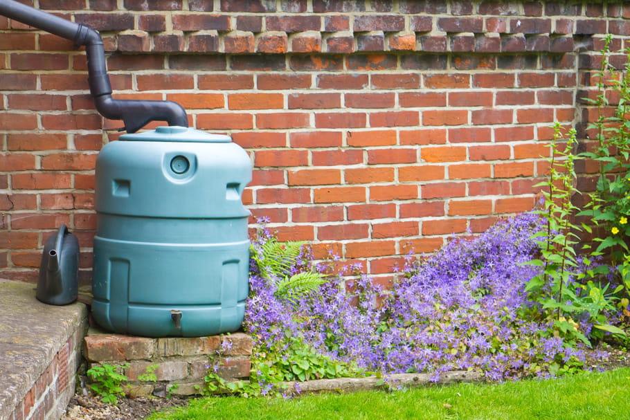Récupérer l'eau de pluie pour jardiner: pourquoi et comment?
