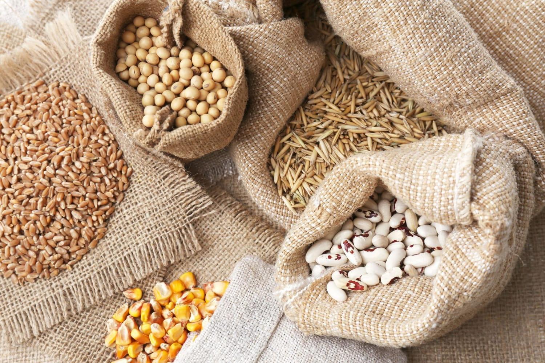 Tout sur les céréales et féculents: les choisir, les conserver, les cuisiner...