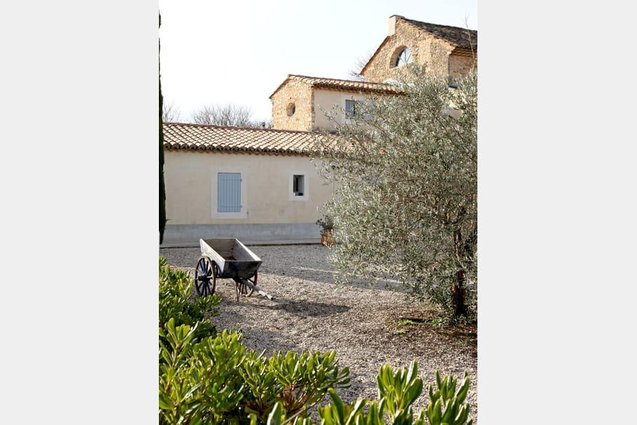 Jamais sans un olivier