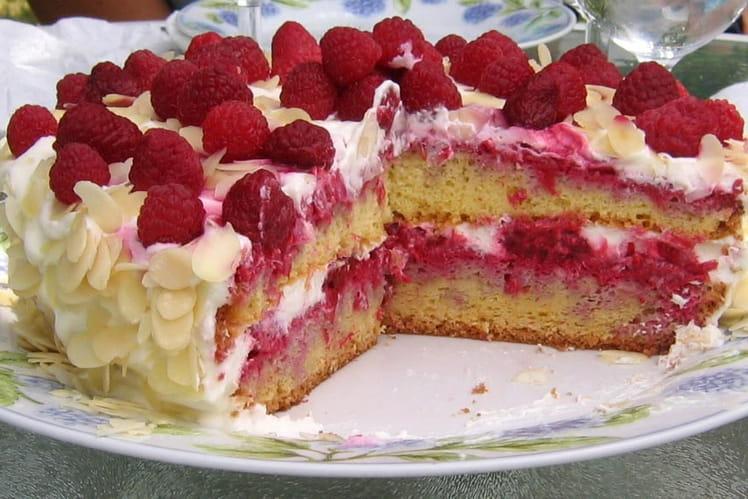 Recette de framboisier l ger la recette facile for Dessert facile et rapide et original