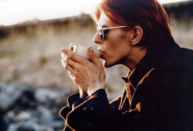 Photo du film THE MAN WHO FELL TO EARTH