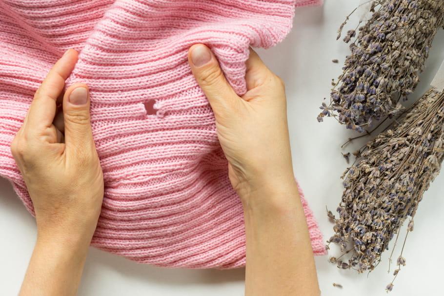 Mites de vêtement: solutions pour s'en débarrasser
