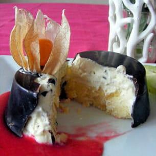 dôme glacé exotique, coulis de framboises vanillé
