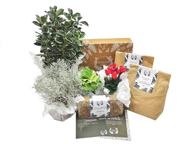 Box de jardinage Réconciliation végétale