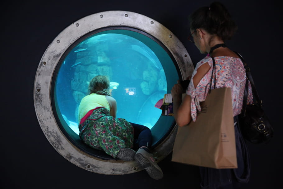 Petit Ours Brun arrive à l'Aquarium de Paris!