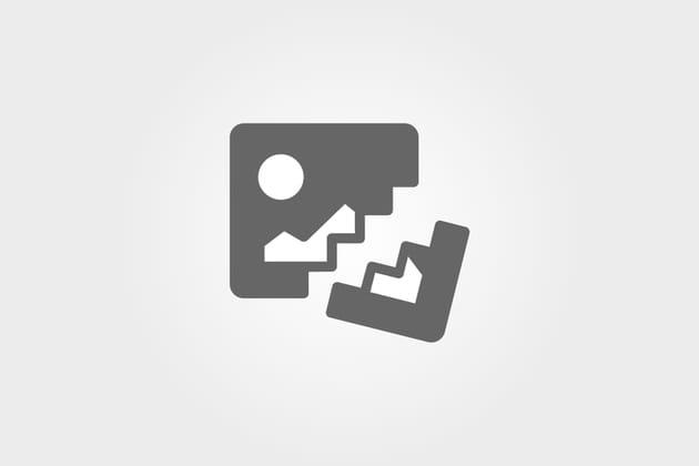 Xavier Niel et ses fils