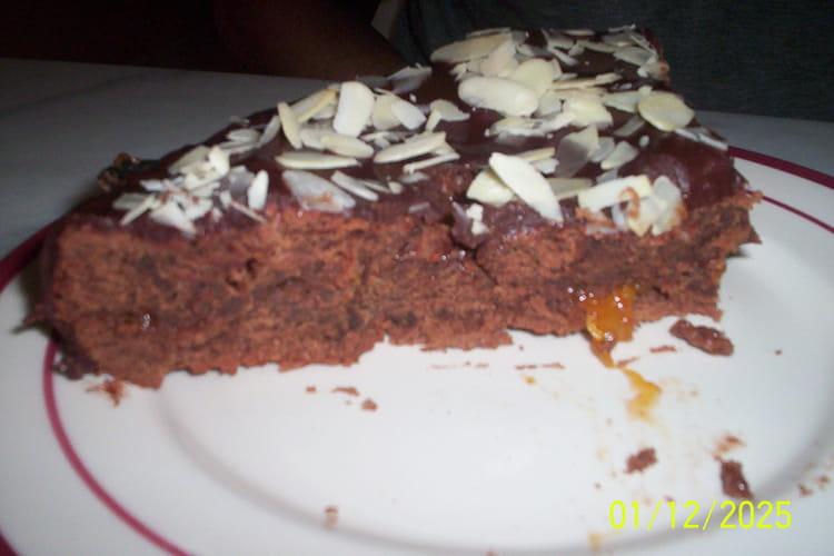 Gâteau au chocolat et confiture d'abricots