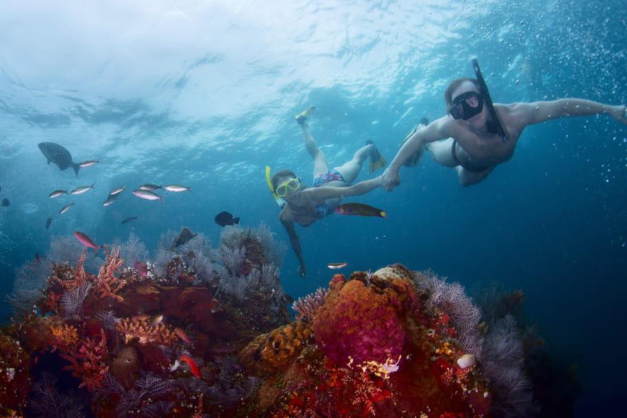 11ans de mariage: les noces de corail