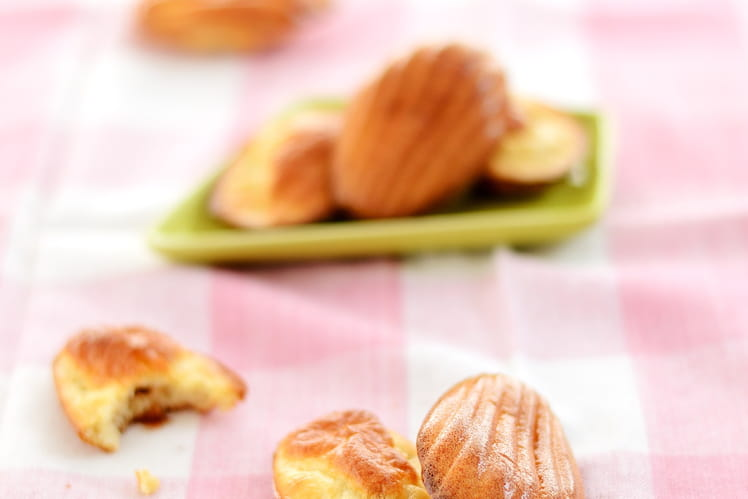 Madeleines light