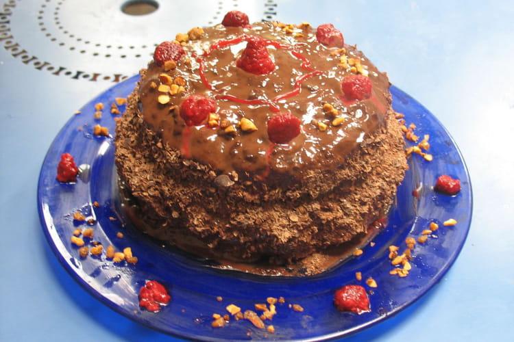 Gâteau génoise chocolat-framboise