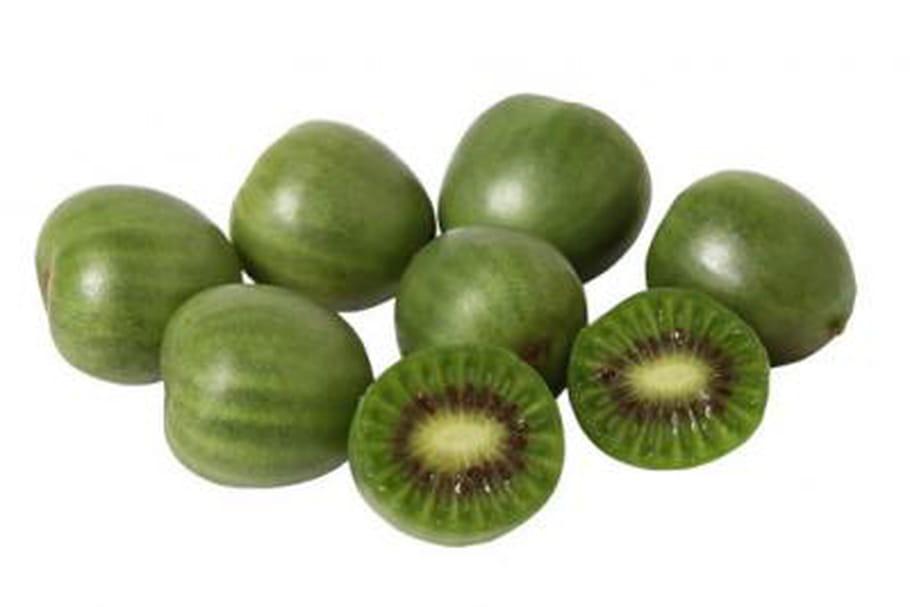 Tendance : Nergi, le baby kiwi