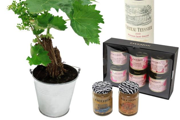 Pied de vigne et son Coffret Made in Terroir FAUCHON par Interflora