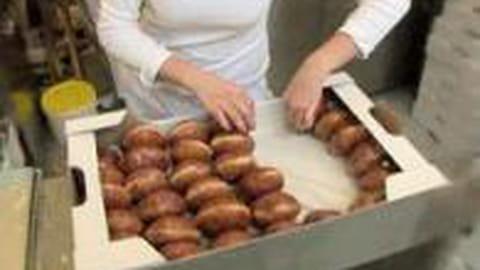 Orgie de beignets en Pologne pour Jeudi Gras