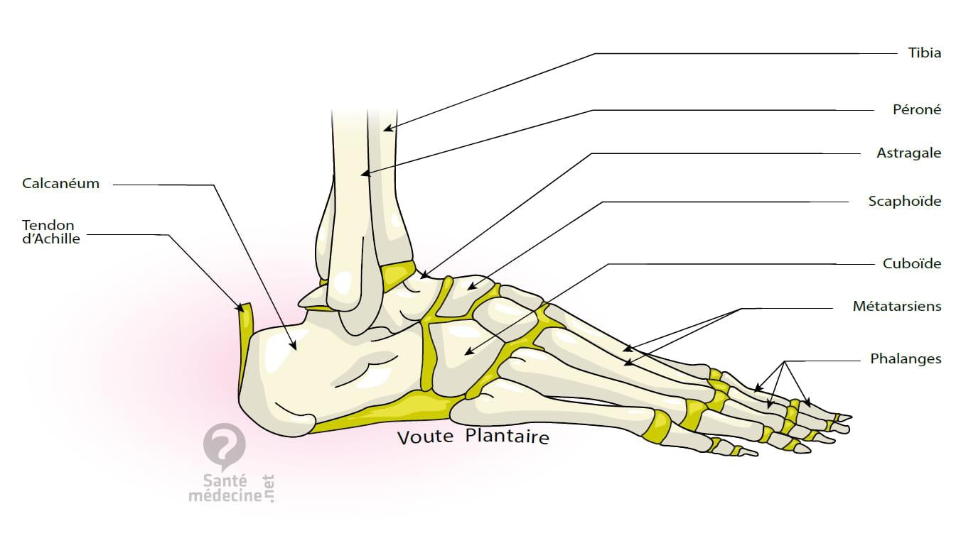 cum doare articulația gâtului Protocolul de tratament comun al artrozei
