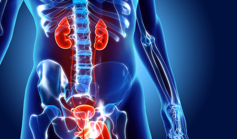Krónikus prosztatitis ami segít