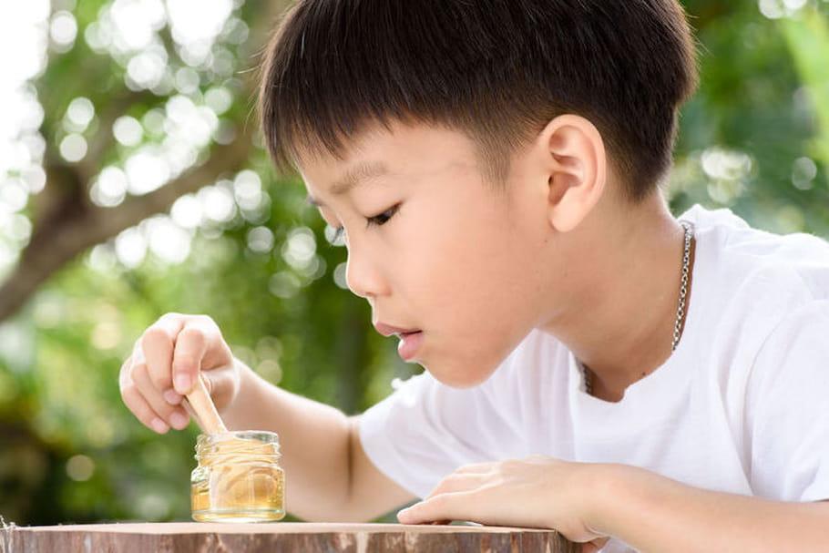 """Le Parlement des enfants souhaite interdire les pesticides et créer des """"autoroutes pour abeilles"""""""
