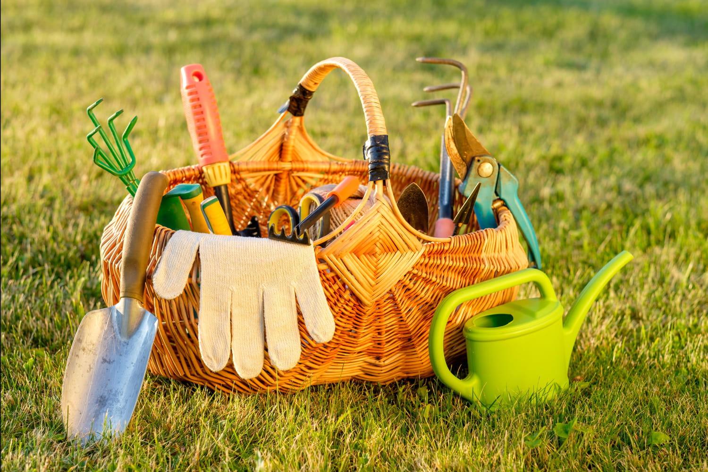 Les essentiels du parfait jardinier
