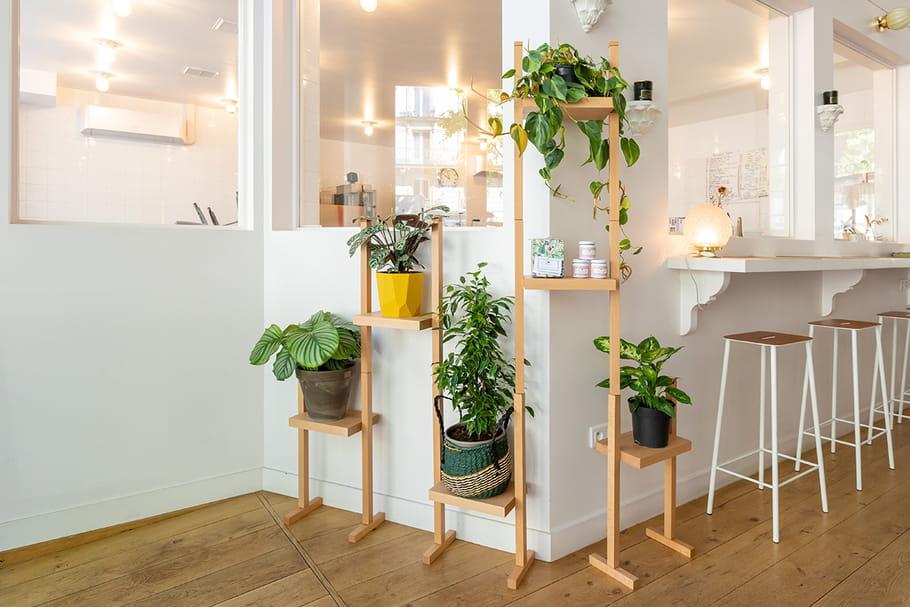 Le Vivant, une nouvelle e-boutique dédiée aux green addicts!