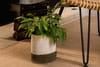 DIY : un cache-pot au crochet pour embellir un vase