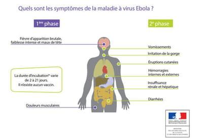 infographie : les symptômes d'ebola.