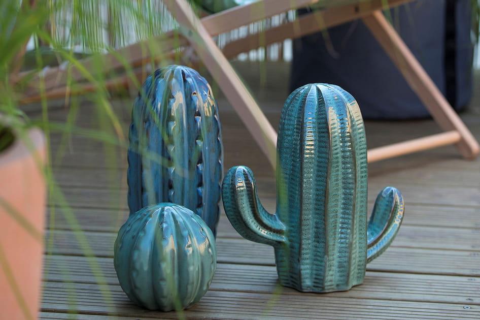 Décorations cactus