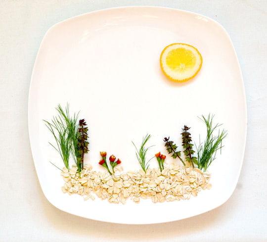 Jardin en nourriture