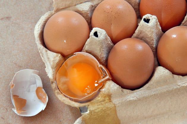 Les coquilles d'œufs