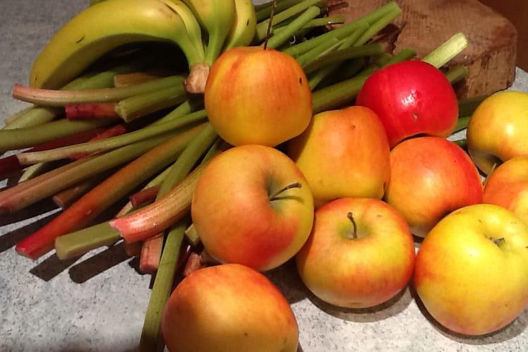 Confiture rhubarbe pomme banane