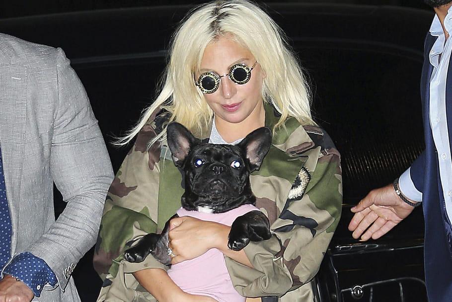Lady Gaga: ses 2chiens retrouvés, et la rançon?
