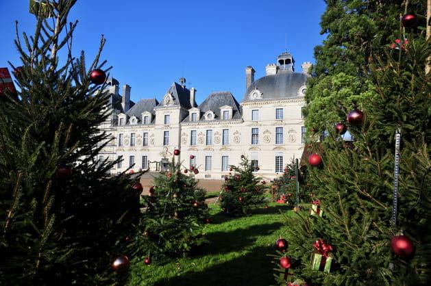 Un Noël magique dans les jardins du Château de Cheverny