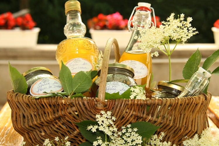 Vin de fleurs Sureau, sirop de fleurs Sureau
