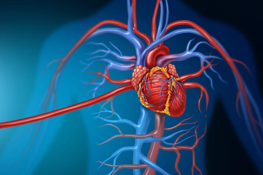 Scanner coronaire: déroulement, où le faire, quel est le prix?