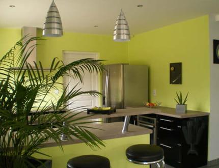 Cuisine vert anis - Les couleurs du salon ...