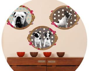 sticker 'portraits dogs' de laissez lucie faire chez art sticker