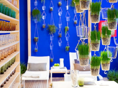 blue room img 9041
