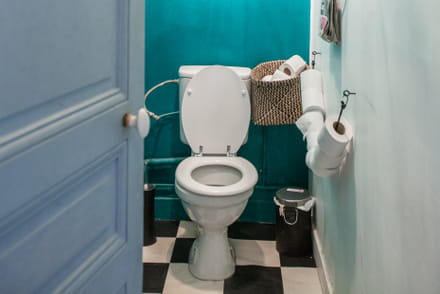 toilettes id es d co entretien et nettoyage des wc. Black Bedroom Furniture Sets. Home Design Ideas