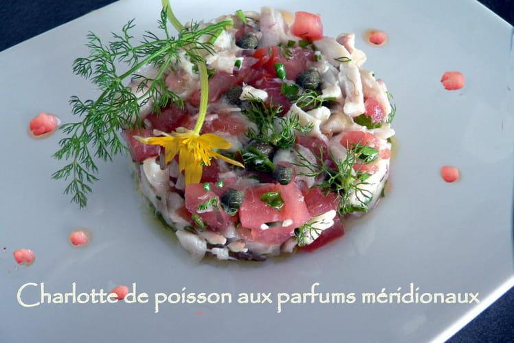 Charlotte de poisson aux parfums méridionaux