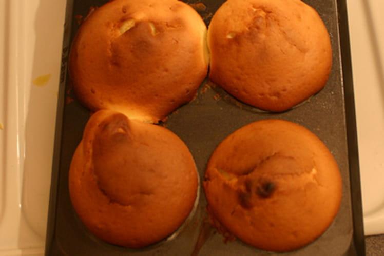 Cookies au miel et au chocolat