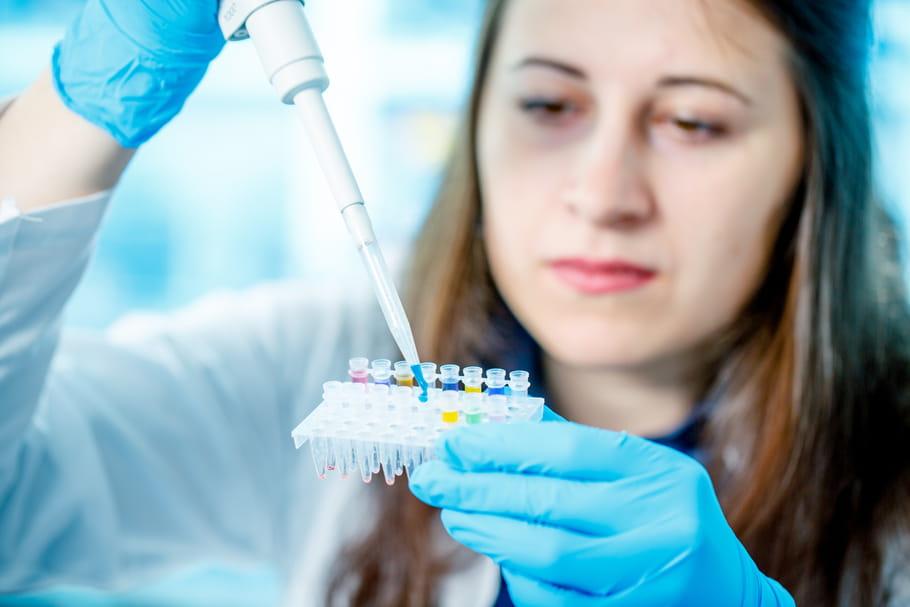 La piste prometteuse d'un vaccin qui protégerait de Zika et de la dengue