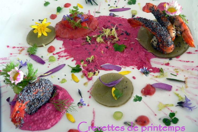 Crevettes de printemps
