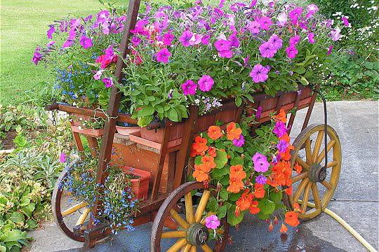 Une charrette très fleurie