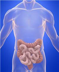 les mici sont des atteintes des intestins qui touchent près de 150 000 personnes