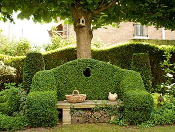 Un banc en topiaire - Deco jardin journal des femmes toulouse ...