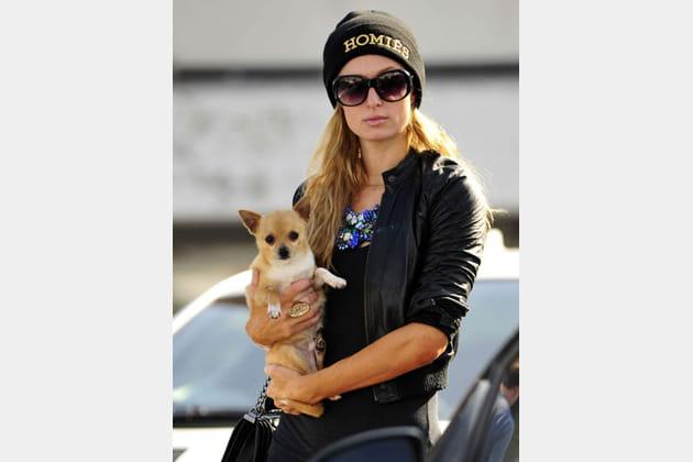Paris Hilton et son chihuahua